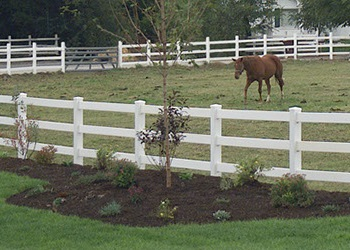 Vinyl Ranch Rail Fencing Gallery