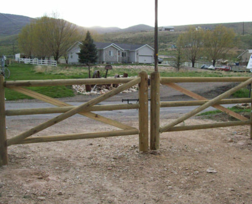 Lodge Pole Double Gate