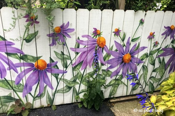 Purple Flowers Painted on Fence